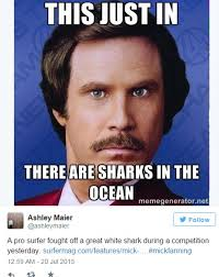 Ron Burgundy Memes - internet goes wild for mick fanning s shark attack in hilarious