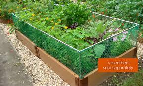 Vegetable Garden Netting Frame by Raised Garden Beds Raised Bed Kits Frame It All