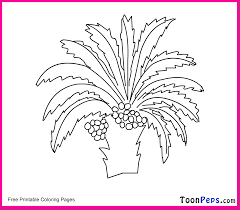 palm tree coloring pages palm tree coloring pages date fruit