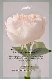 where to buy petals heart of gold petal by petal juliet garden