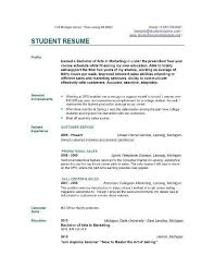 basic resume exles for students template