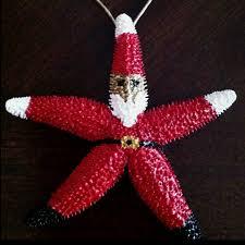 19 best starfish images on nautical