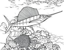 free creation coloring page fish just for kids swordfish pages