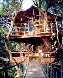 sanya nanshan treehouse resort and beach club tree houses