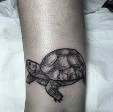 great turtle pictures tattooimages biz