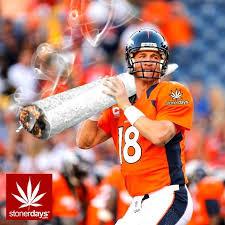 Super Bowl Weed Meme - the stoner bowl stoner blog