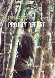 project report bambú social 2 0 by bambú social issuu