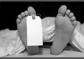 human cremation should human bodies be used instead of buried or cremated