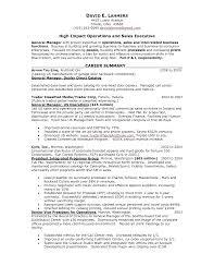 resume career summary resume sales skills free resume example and writing download sales resume skills