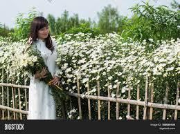 vietnamese traditional dress image u0026 photo bigstock