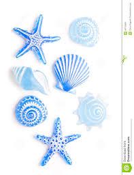 blue sea shell ornaments stock photo image of ornament 46770064