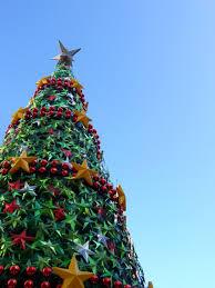 melbourne christmas tree free photos 1383745 freeimages com