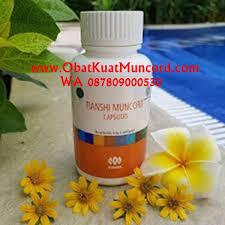 jual obat kuat alami dan tahan lama tradisional buat pria dan