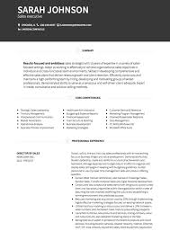 Samples Of A Professional Resume by Sales Cv Examples And Template