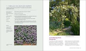 Fragrant Plants List The Aromatherapy Garden Growing Fragrant Plants For Happiness And