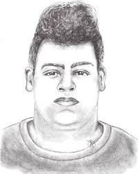 police release sketch of u0027person of interest u0027 in attempted sexual