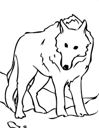 snow wolf coloring download u0026 print coloring pages