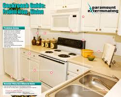 How To Get Rid Of Cockroaches In Kitchen Cabinets by Paramount Exterminatingnj Cockroach Control Paramount Exterminating