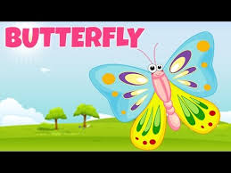 how to pronounce butterfly त तल pronunciation in
