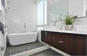 corner walk in shower cintinel com
