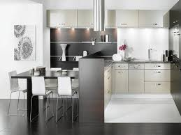kitchen black shiny kitchen cabinets furniture style cabinets