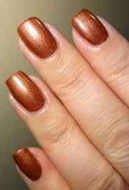 wendy u0027s delights miss beauty nail polish copper exclusive to