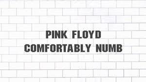 Pink Floyd Lyrics Comfortably Numb Pink Floyd Comfortably Numb 2011 Remaster Youtube