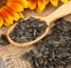sunflower oil in mumbai manufacturers and suppliers india