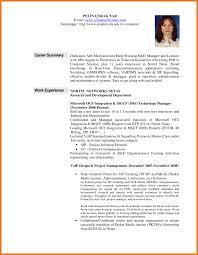 how to write a career summary on your resume career summary
