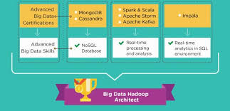 big data class career path explained big data hadoop developer to architect