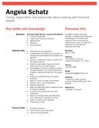 high resume summary exles resume sle for high graduate sle high free