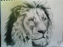 more detailed lion sketch by hellheaven17 on deviantart