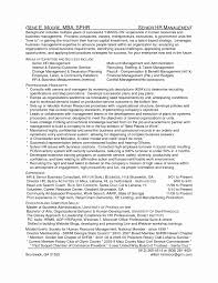 hr business consultant resume business consultant sample resume elegant business consultant