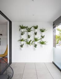 how indoor plants transformed this inner city apartment homes to