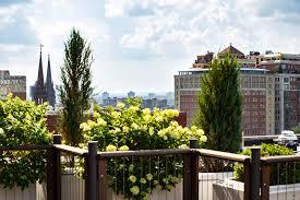 boston real estate market center robert paul properties