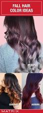 Change Hair Color Online Free Best 25 Matrix Hair Color Ideas On Pinterest Matrix Hair