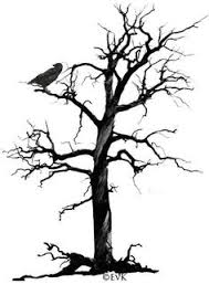 pictures of crows in trees search 线条