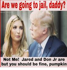 Jail Meme - are we going to jail daddy america not me jared and don jr are but