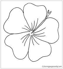 coloring pictures of hibiscus flowers hibiscus coloring pages hibiscus coloring page from book pages free