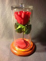rose in glass beauty and the beast rose in glass imgur