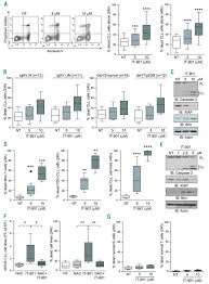 targeting metabolism and survival in chronic lymphocytic leukemia