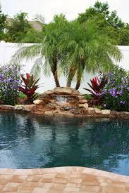 Backyard With Pool Landscaping Ideas by 378 Best Pools Images On Pinterest Backyard Ideas Pool Ideas