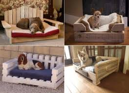 How To Make A Dog Bed How To Make The Easiest Diy Pallet Dog Bed The Whoot