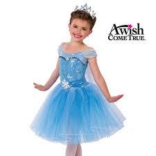 elsa costume a wish come true 2018 elsa ballet tutu