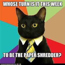 Shredding Meme - i can has cheezburger paper shredder funny animals online
