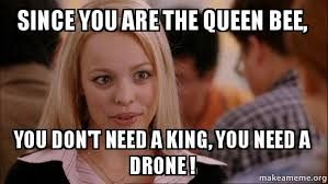 Mean Girls Meme - since you are the queen bee you don t need a king you need a drone