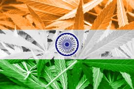 Colorado Flag Marijuana Pass Me The Bhang The Fight For The Legalization Of Marijuana In