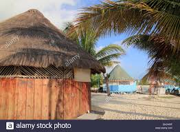 Mexican Thatch Roofing by Tropical Wood Hut Palapa In Cancun Mexico Stock Photo Royalty