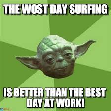 Web Memes - catch these funny surfing memes thechive