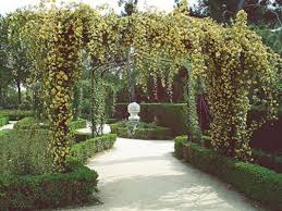 wedding backdrop green buy discount kate park wedding backdrop european style garden for